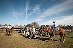 2013-Amador cattle branding
