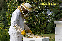1B15-507z  Caring for Honeybee Hive