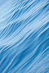 Sea of Cortez, Baja California, Mexico; ripples on the water's surface reflect the blue sky above