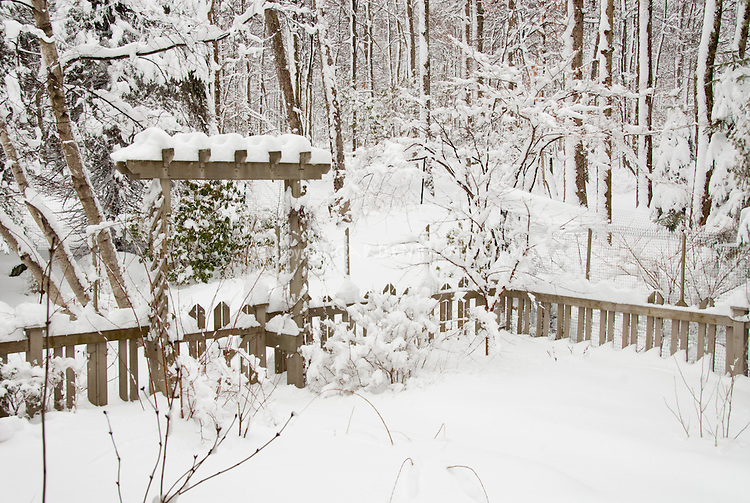 Garden with picket fence and trellis in winter snow