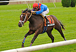 Shkspeare Shaliyah (no. 7), ridden by Alex Solis and trained by Doodnauth Shivmangal, wins the  33rd running of the grade 3 Pilgrim Stakes for two year olds on October 02, 2011 at Belmont Park in Elmont, New York.  (Bob Mayberger/Eclipse Sportswire)
