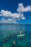 A woman standup paddles around a honu (green sea turtle) in the calm waters of Waimea Bay, O'ahu.