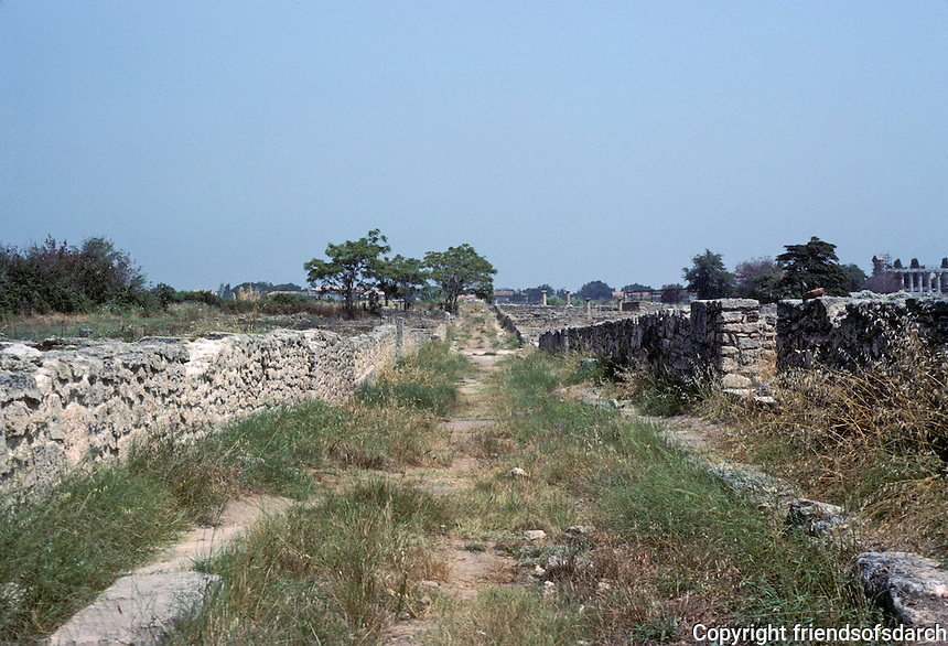 Italy: Paestum--a classical Graeco-Roman city in Campagna region. (Its ruins came to be noticed in 18th C.) A sidestreet--generous width, a part of the strict gridiron plan of the town . Photo '83.