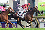 Trade Storm (GB)(2) with Jockey Jamie P. Spencer aboard runs to victory at the Ricoh Woodbine Mile Stakes at Woodbine Race Course in Toronto, Canada on September 14, 2014 .