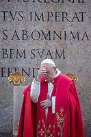 Pope Francis during of the Palm Sunday celebration on St Peter's square at the Vatican.April 14,2019