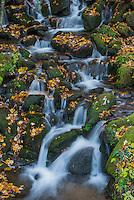 Cascade, Great Smoky Mountain National Park.