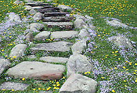 Stock image of rustic stone steps slope surrounded by wildflowers bluets and common hawkweed in the foothills of clingmans dome in the great smoky mountains national park, Tennessee, America.