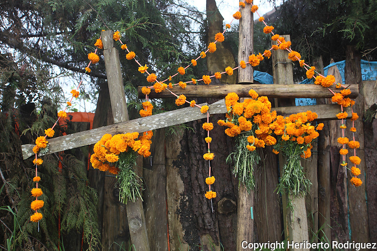Crosses appear adorned with cempaxochitl flowers to pay homage to the Day of the Deads in front of a corn milpa in Acaxoxhitlan, a Native nahuatl village, in northern state of Hidalgo. Hundreds of Native villages pay homage to their deads on the eve of November 2 as a tradition since the preHispanic times. Photo by Heriberto Rodriguez