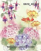 Patrick, FLOWERS, BLUMEN, FLORES, paintings+++++,GBIDBS795,#f#, EVERYDAY