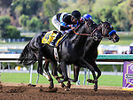 September 27, 2014 Shared Belief with Mike Smith up defeats Fed Biz and Martin Garcia to win the Awesome Again Stakes at Santa Anita Park in Arcadia CA. Zoe Metz/ESW/CSM