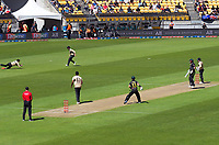 NZ's Mitch Santner catches Aaron Finch off Ish Sodhi during the 5th international men's T20 cricket match between the New Zealand Black Caps and Australia at Sky Stadium in Wellington, New Zealand on Sunday, 7 March 2021. Photo: Dave Lintott / lintottphoto.co.nz