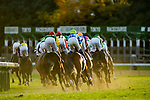 FUCHU,JAPAN-NOVEMBER 26: 1st turn in the Japan Cup at Tokyo Racecourse on Nobember 26,2017 in Fuchu,Tokyo,Japan (Photo by Kaz Ishida/Eclipse Sportswire/Getty Images)