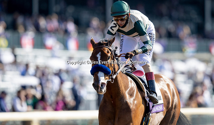 November 7, 2020 : Gamine, ridden by John Velazquez, wins the Filly & Mare Sprint on Breeders' Cup Championship Saturday at Keeneland Race Course in Lexington, Kentucky on November 7, 2020. Alex Evers/Breeders' Cup/Eclipse Sportswire/CSM