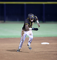 James Wood - 2021 Arizona League Padres (Bill Mitchell)
