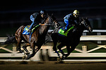 October 22, 2021: Eight Rings (inside) works at Santa Anita Park in Arcadia, California on October 23, 2021. Evers/Eclipse Sportswire/CSM