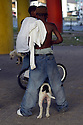 Young boys bring their pitt bulls to the Claiborne overpass during the annual Mother's Day celebration, New Orleans, May 8, 2005.