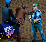 DEL MAR, CA - OCTOBER 30: Best Performance, owned by West Point Thoroughbreds, Inc., Tango Uniform Racing & Robert Masiello and trained by Christophe Clement, exercises in preparation for Breeders' Cup Juvenile Fillies Turf at Del Mar Thoroughbred Club on October 30, 2017 in Del Mar, California. (Photo by Jon Durr/Eclipse Sportswire/Breeders Cup)