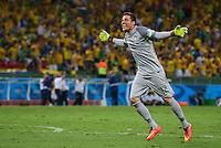 Brazil goalkeeper Julio Cesar celebrates his sides second goal by David Luiz