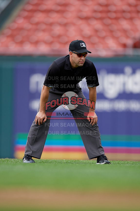 Umpire Dan Merzel during an International League game between the Norfolk Tides and Buffalo Bisons on June 21, 2019 at Sahlen Field in Buffalo, New York.  Buffalo defeated Norfolk 2-1, the first game of a doubleheader.  (Mike Janes/Four Seam Images)