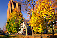 Amherst, college, university, MA, Massachusetts, University of Massachusetts Amherst campus in Amherst in the autumn.