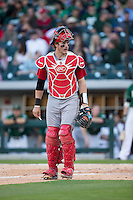 Andrew Knizner (11) of the North Carolina State Wolfpack during the game against the Charlotte 49ers at BB&T Ballpark on March 31, 2015 in Charlotte, North Carolina.  The Wolfpack defeated the 49ers 10-6.  (Brian Westerholt/Four Seam Images)