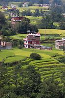 Dulikhel Rice Paddies on the outskirts of Kathmandu, Nepal