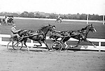 Oakland Section of Pittsburgh:  View of the trotters racing at the Schenley Park Oval.  The racing images are special due to the skill needed to capture the moving trotter with the equipment and film available at this time.