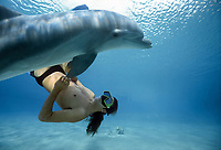 Dolphin trainer interacts with Bottlenose Dolphin, Tursiops truncatus, Dolphin Reef, Eilat, Israel, Red Sea.