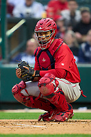 Worcester Red Sox catcher Jhonny Pereda (28) during a game against the Rochester Red Wings on September 2, 2021 at Frontier Field in Rochester, New York.  (Mike Janes/Four Seam Images)
