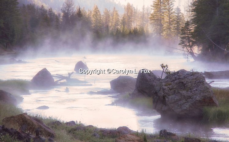 Steam rises from the Madison River in Yellowstone,