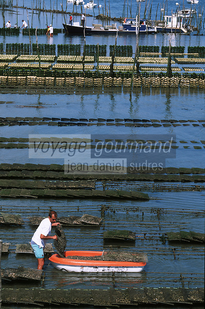 Europe/France/Aquitaine/33/Gironde/Bassin d'Arcachon/Le Cap Ferret: Parcs ostréicoles à la jetée Balisaire