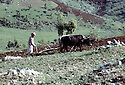 Irak 1973.Labour dans le Badinan.Iraq 1973.Ploughing in Badinan.