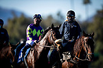 January 30, 2021:  Parnelli at the Robert B Lewis Stakes at Santa Anita Park in Arcadia, California on January 30, 2021. Evers/Eclipse Sportswire/CSM