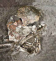 Plastered human skull and jawbone [11330]. Unique among excavated human remains from  Catalhoyuk, the shull and jawbone have been covered in soft palster from the forehead to the chin. This was then painted dark red. The nose was remodelled in plaster and several layers of plaster indicate that the process was repeated several times. Possibly an adult female.  Building 42 {F 1517], level V cirac 6300 BC . Catalhoyuk collection, Konya Archaeological Museum, Turkey