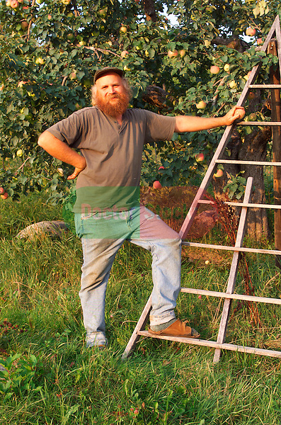 organic apple grower with Duchess of Oldenburg apple tree