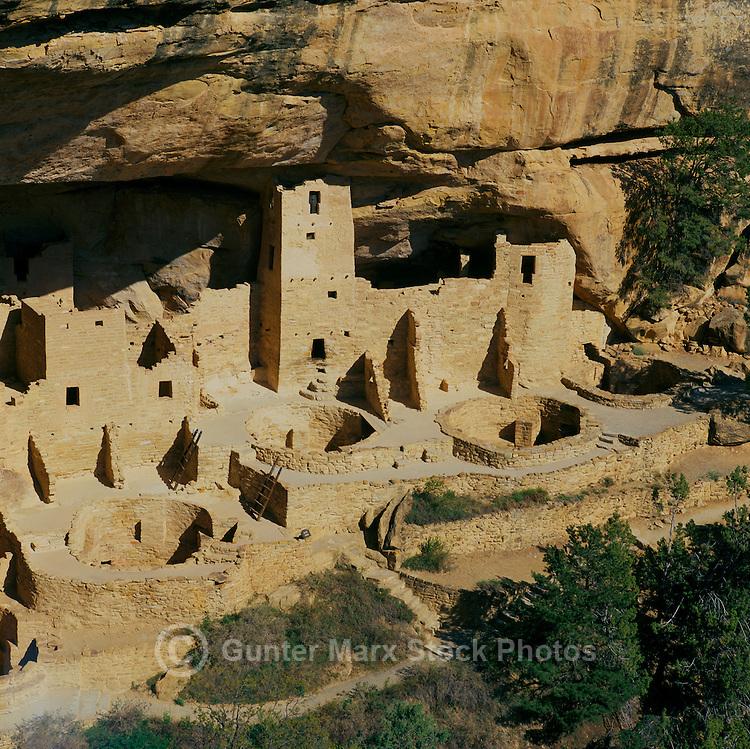 Mesa Verde National Park, Colorado, USA - Cliff Palace, an Ancestral Puebloan aka Anasazi Cliff Dwelling and Ruins, Kivas in mid-ground