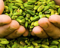 Bronte pistachios