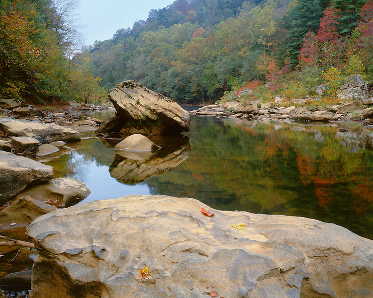 Fall color along the Big South Fork of the Cumberland River at Leatherwood Ford; Big South Fork National River & Recreation Area, TN.
