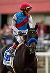 MAY 15, 2021: Medina Spirit with John Velazquez after the Preakness Stakes at Pimlico Racecourse in Baltimore, Maryland on May 15, 2021. EversEclipse Sportswire/CSM