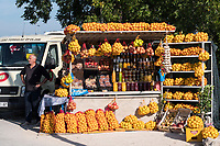 CROATIA, Neretva also known as the Narenta river valley, fruit and vegetable farming, direct selling along the road