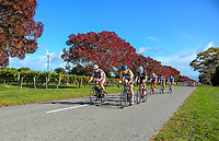 Under-23 and Senior Men's road race, Carterton-Martinborough-Gladstone circuit, on day two of the 2018 NZ Age Group Road Cycling Championships in Carterton, New Zealand on Sunday, 22 April 2018. Photo: Dave Lintott / lintottphoto.co.nz