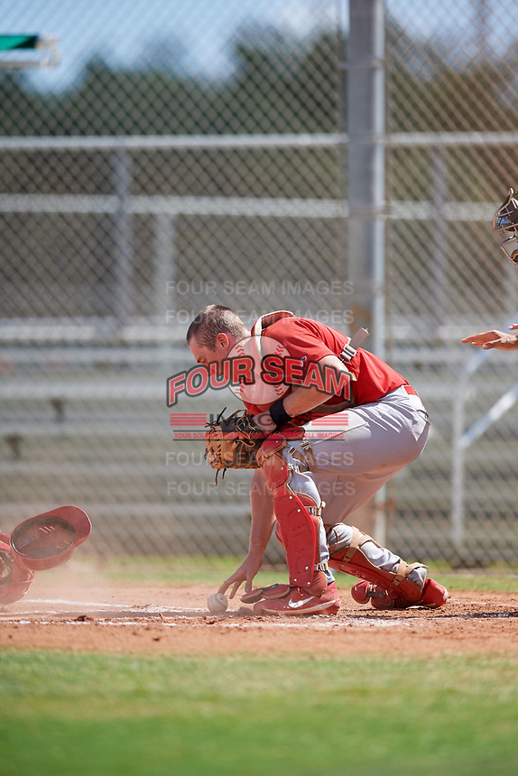 GCL Cardinals catcher Brandon Purcell (4) tracks down a loose ball during a game against the GCL Mets on August 6, 2018 at Roger Dean Chevrolet Stadium in Jupiter, Florida.  GCL Cardinals defeated GCL Mets 6-3.  (Mike Janes/Four Seam Images)