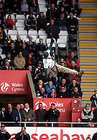SWANSEA, WALES - FEBRUARY 21: A member of the Armed Forces abseils from the stadium roof prior to the Barclays Premier League match between Swansea City and Manchester United at Liberty Stadium on February 21, 2015 in Swansea, Wales.