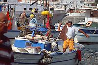 Italien, Ischia, Fischerboote im Hafen von Porto