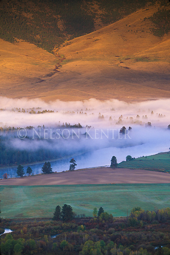 Fog fills the valley above the Flathead River between green and gold foothills