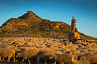 """Europe, Espagne, Navarre, env de Carcastillo : Parc Naturel des Bardenas Reales, Le 18 septembre, El Paso :  la Sanmiguelada, jour de transhumance, Entrée des troupeaux de moutons dans les Bardenas par El Paso  et monument au berger // Europe, Spain, Navarre, near Carcastillo : Bardenas Reales Natural Park, El Paso: the """"Sanmiguelada"""", the day when thousands of sheep from the Pyrenean valleys make their way to this vast extension along El Paso to graze during the winter qand Monument to the shepherd"""