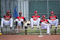 (L-R) Hickory Crawdads pitchers Adam Choplick (38), Dillon Tate (17), Blake Bass (28), Erik Swanson (37), and Jeffrey Springs (19) sit in the bullpen during the game against the Delmarva Shorebirds at L.P. Frans Stadium on June 18, 2016 in Hickory, North Carolina.  The Crawdads defeated the Shorebirds 1-0 in game one of a double-header.  (Brian Westerholt/Four Seam Images)