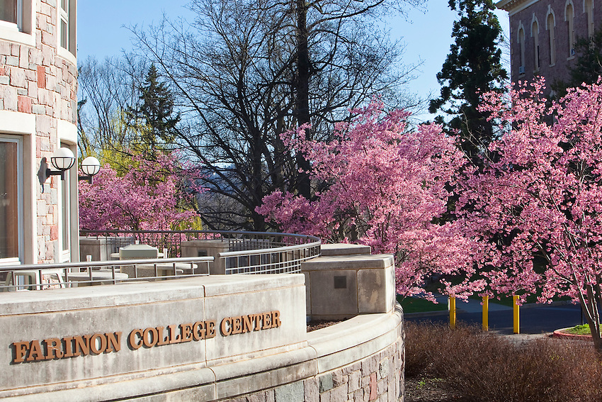 Various Spring Scenics on campus during April of 2010: trees bloom in front of Farinon College Center