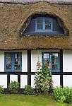 Denmark, Jutland, Boes near Skanderborg: Traditional half timbered thatched cottage with Hollyhocks | Daenemark, Juetland, Boes bei Skanderborg: traditionelles Reet gedecktes Haus mit Ochsenauge
