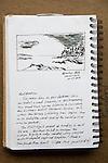 Botantical Beach, Vancouver Island, ink on paper, Journal Art 2008,
